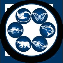 Semeniuk Lab Predictive Ecology